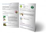 Brochure costi acroyoga teacher training